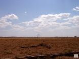 2004 Kenya
